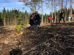 Den za obnovu Lesa_Martin Michálek